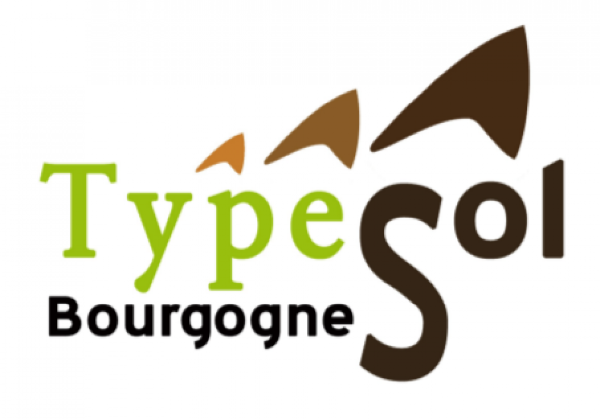 cropped-typesol.png